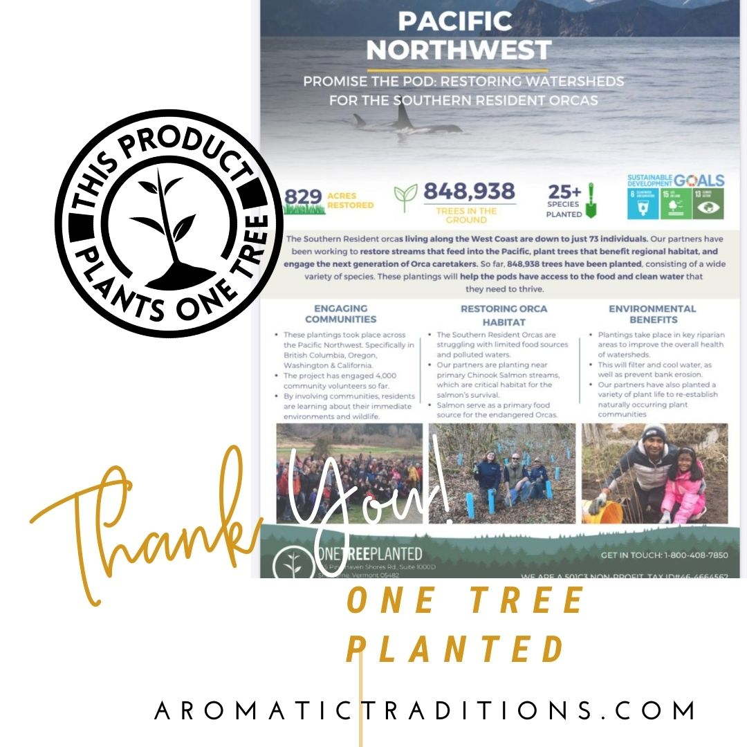 Aromatic Traditions One Tree Planted Blog Post